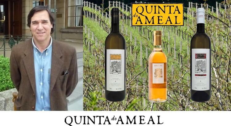 Producer Focus: Quinta do Ameal
